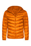 Heren light weight jacket, Oranje