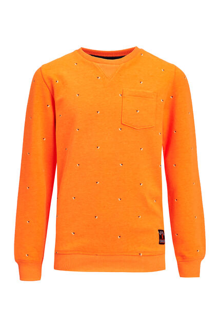 Sweat-shirt à imprimé garçon Orange vif