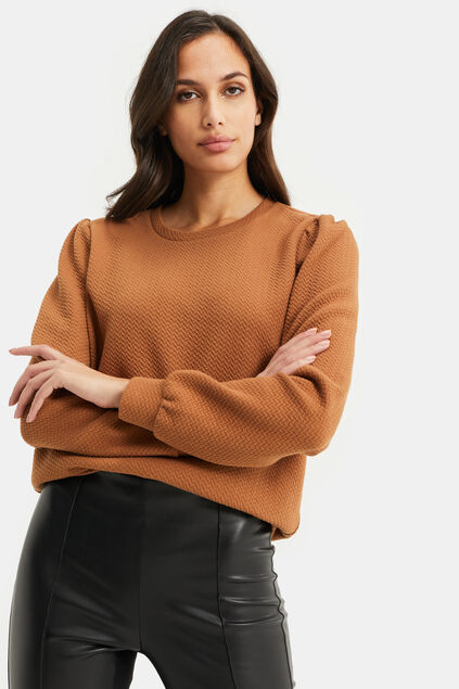 Sweat-shirt à structure femme Brun rouille
