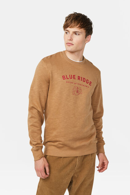 Sweat-shirt Blue Ridge homme Brun clair