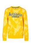 Sweat-shirt Arizona garçon, Jaune ocre