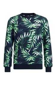 Sweat-shirt à motif jungle garçon_Sweat-shirt à motif jungle garçon, Imprimé