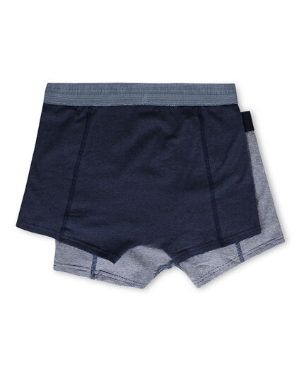HEREN BLUE RIDGE BOXERSHORT, 2-PACK Donkerblauw
