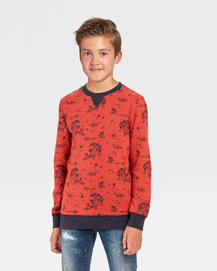 JONGENS BERGENPRINT SWEATER Rood