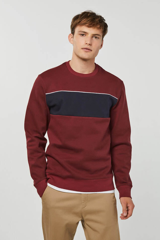 Heren colourblock sweater Bordeauxrood