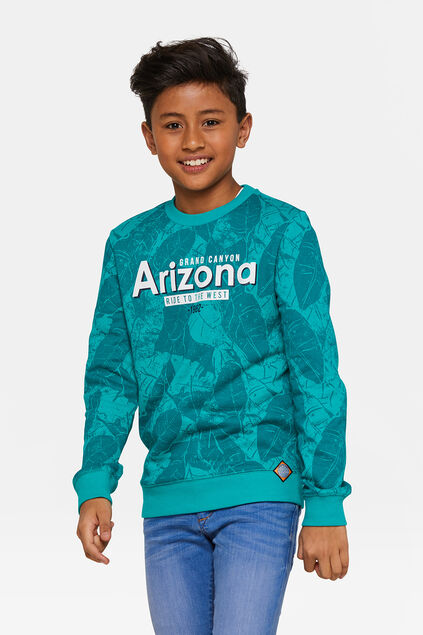 Sweat-shirt Arizona garçon Vert