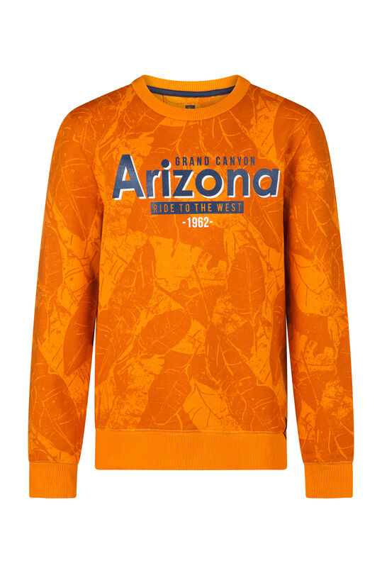 Jongens Arizona sweater Geel
