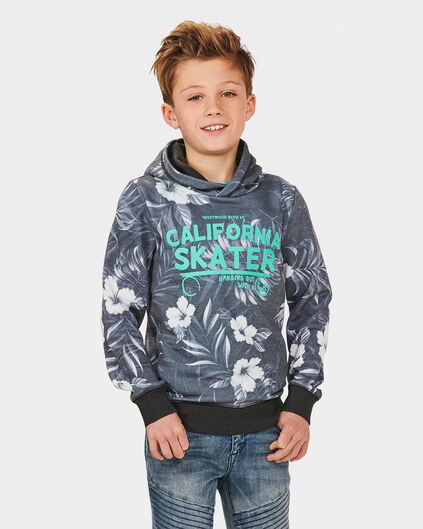 JONGENS CALIFORNIA SKATER SWEATER Grijs