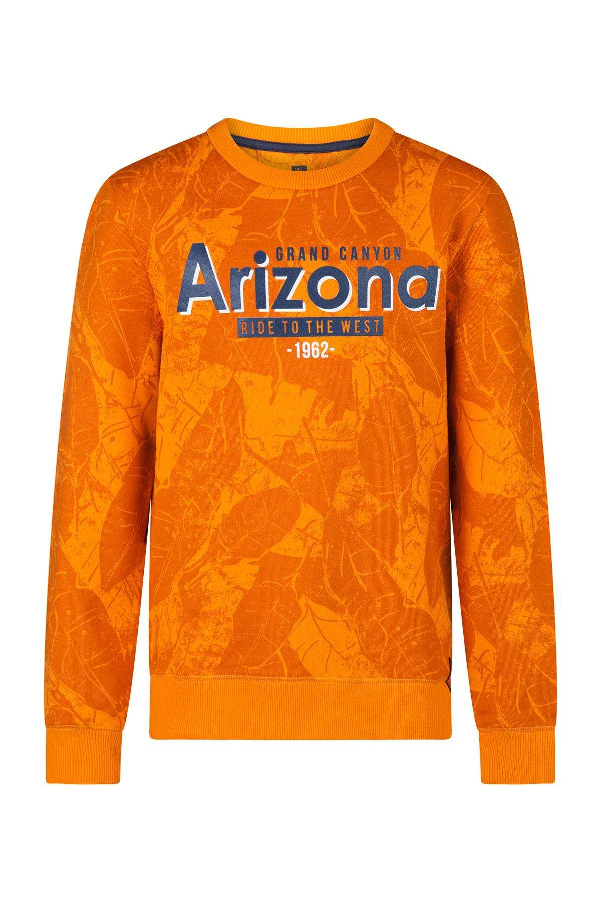 7472a5e72d7dd6 Jongens Arizona sweater | 94411164 - WE Fashion